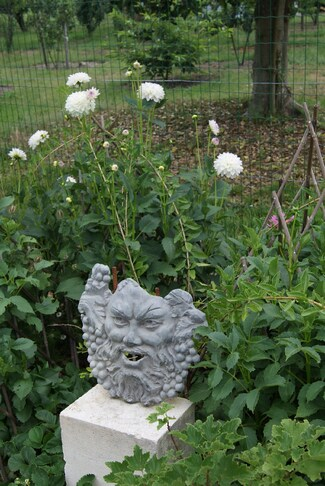 Bacchus au milieu des dahlias.