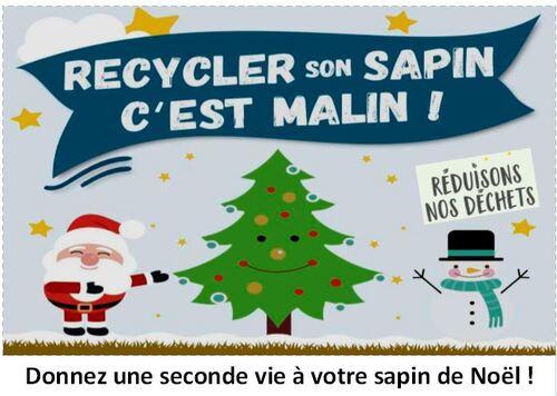 Recyclez votre sapin de Noël