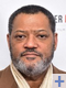 Pascal Renwick voix francaise laurence fishburne