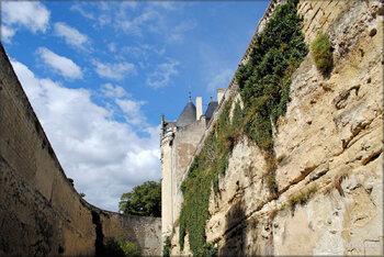 """Photos """"au fond des douves"""" - Château de Brézé"""