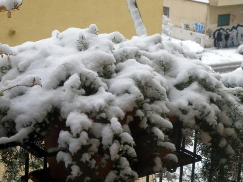 La neige!!!!!