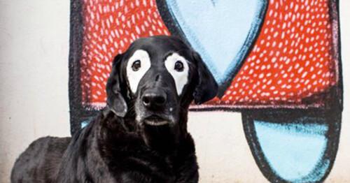Carter atteint de vitiligo et son chien Rowdy