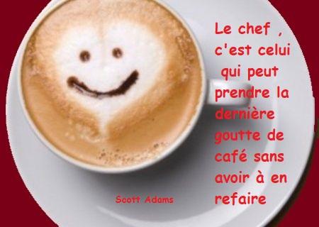 Le Marc de café,un engrais naturel voir plus et gratuit.
