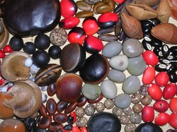 La sélection des semences