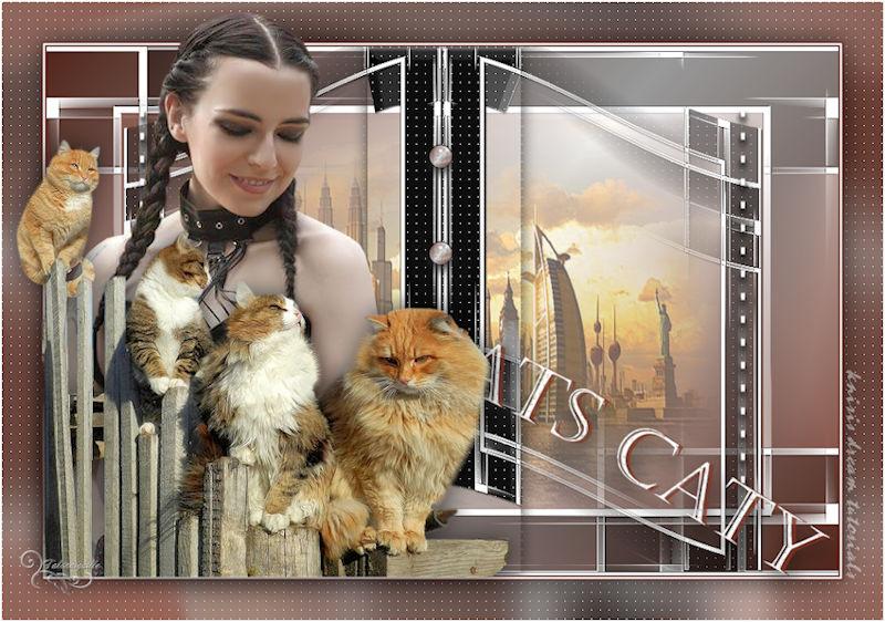 *** Cats-Caty ***