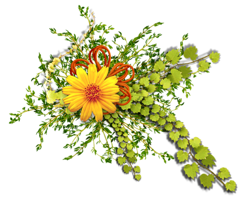 Ornements Floraux Série 18