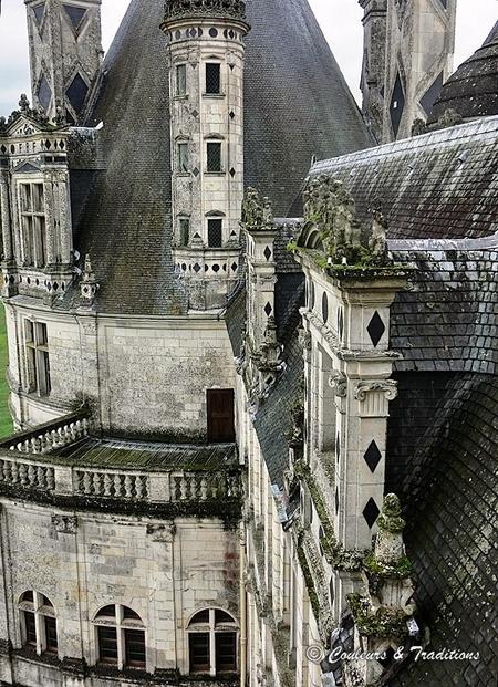 Sur les toits du chateau de Chambord