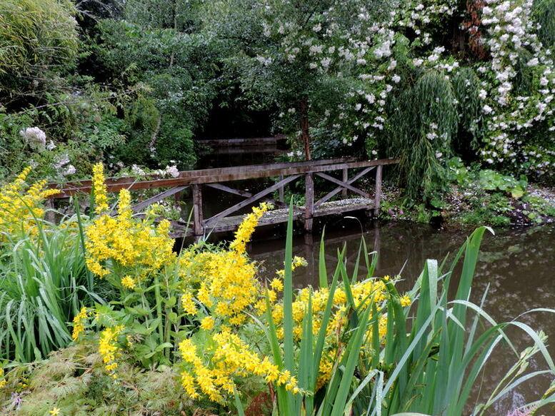 Jardin de la Pellerine - 2 -