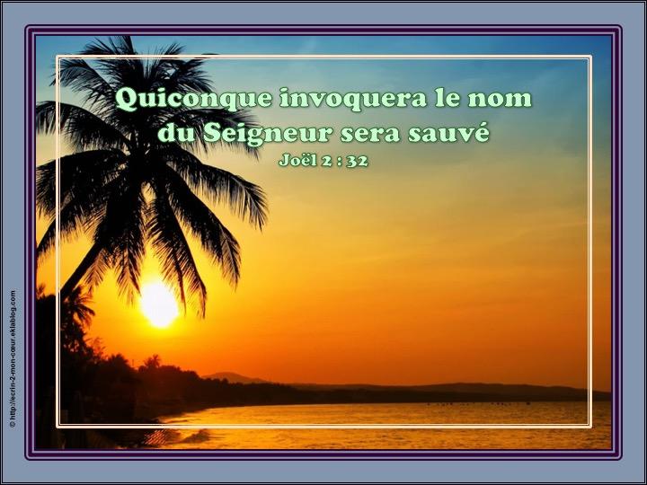 Quiconque invoquera le nom du Seigneur sera sauvé - Joël 2 : 32