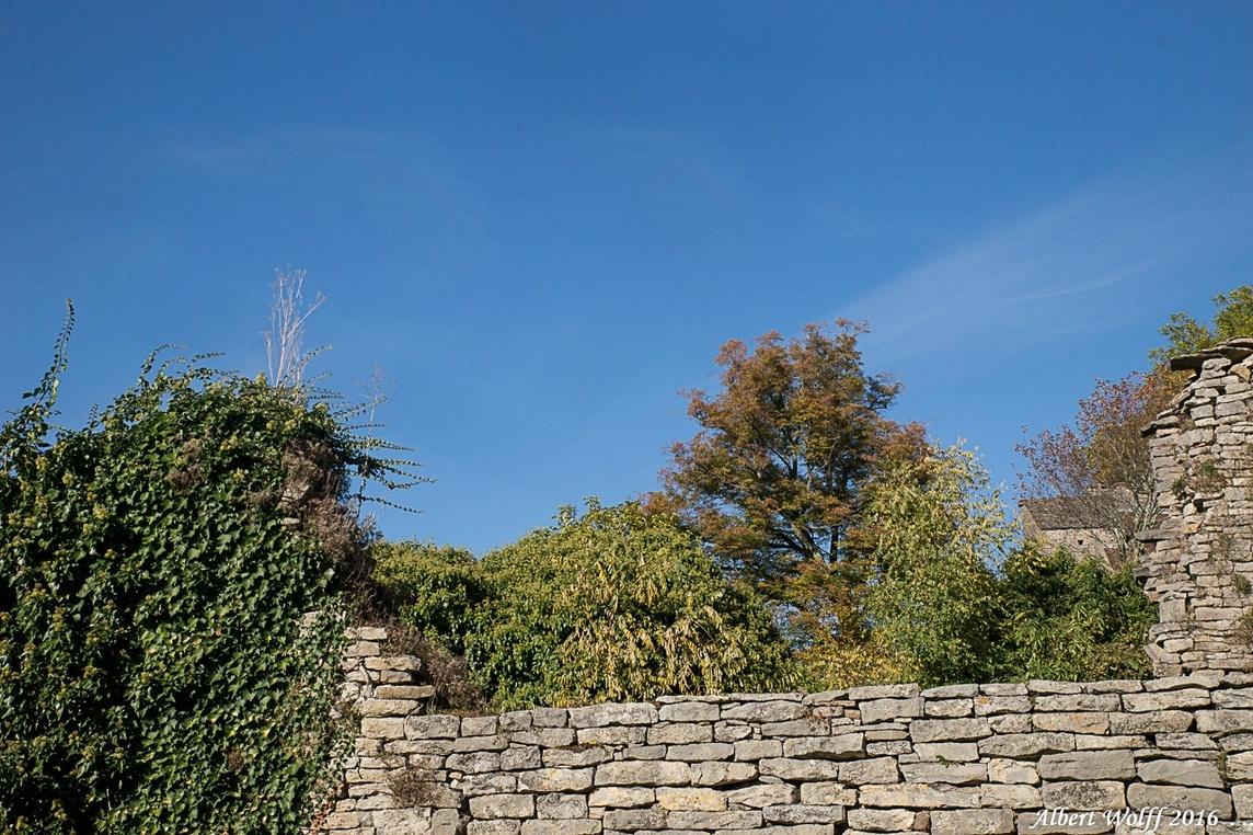 Le vieux mur.