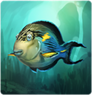 SohalSurgeonfish