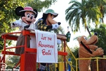 Welcome Shows at Walt Disney World