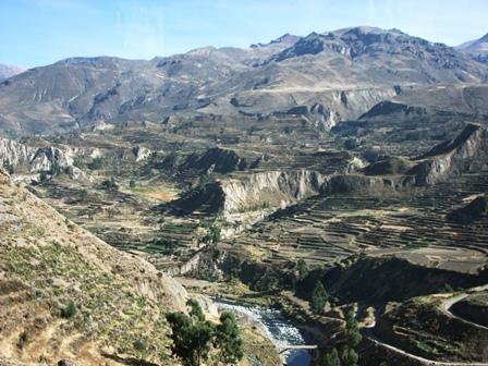 Canyon de Colca & Cruz del Condor