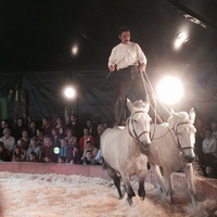 Terre à Ch'val [Spectacle Equestre]