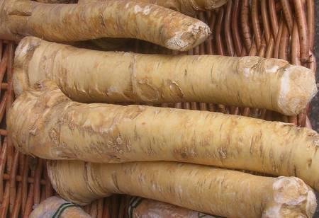 Racines de raifort. © Anna Reg, CC by-nc3.0
