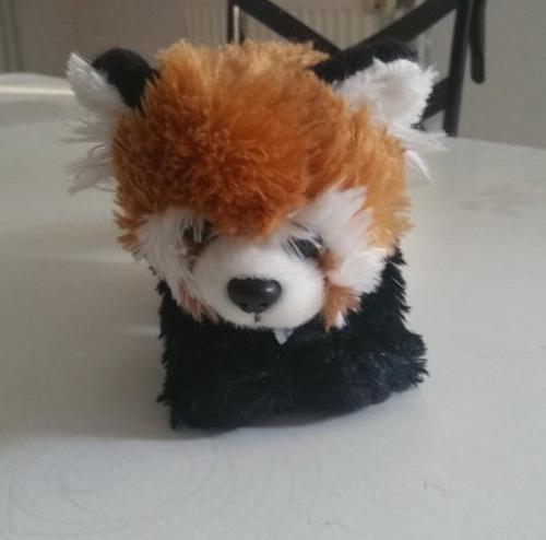 Suite du zoo de Pessac le panda roux