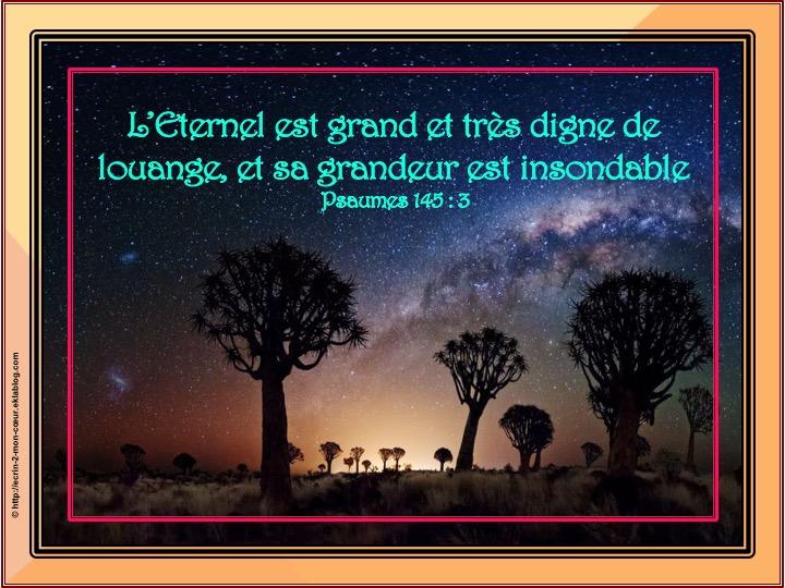L'Eternel est grand - Psaumes 145 : 3
