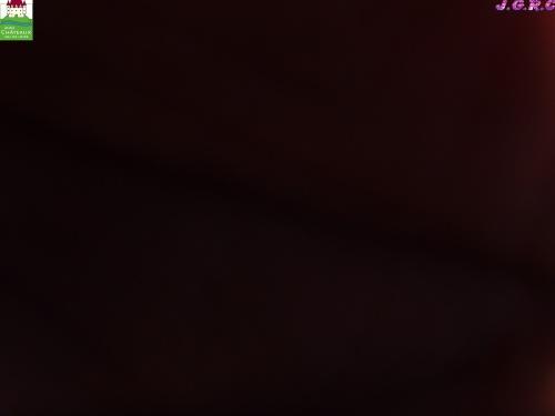 MINI CHATEAUX 11/16 A AMBOISE