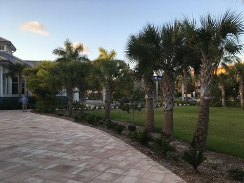 Jour 4 - de Key West à Naples