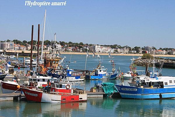 port de pêche royan-5-
