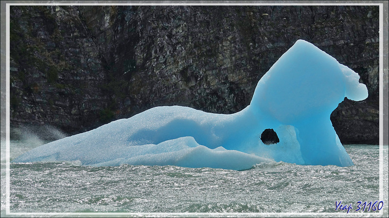 Le Sphinx de glace du Lago Grey - Parque Torres del Paine - Patagonie - Chili