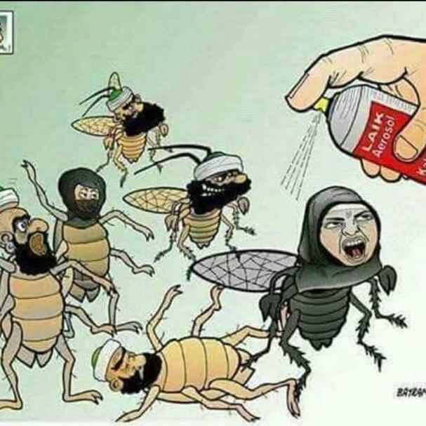 Insecticide à volonté