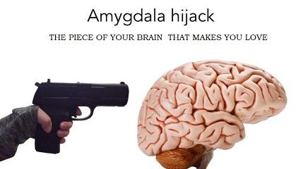 Et notre cerveau, comment va-t-il ?