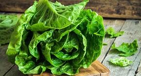 N'en faites pas toute une salade ...