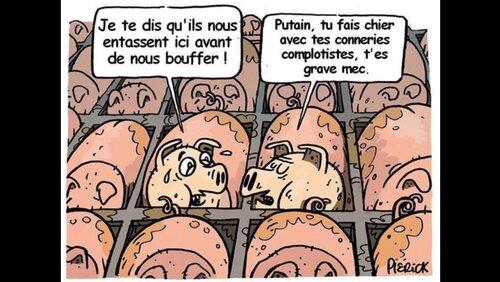 Les infos du poissonnier : Réflexion sur notre belle France !