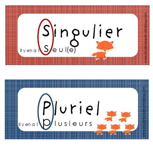 Singulier - Pluriel