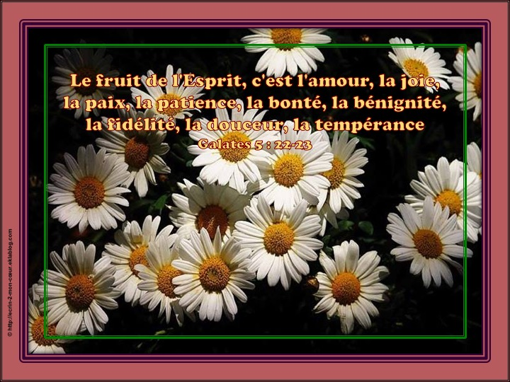 Le fruit de l'Esprit - Galates 5 : 22-23