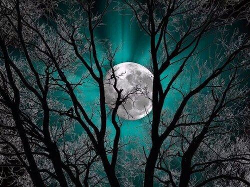 La lune en Novembre