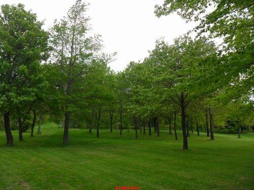 Vernioz. Le jardin du bois marquis (4).