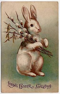 Lapins de Pâques.