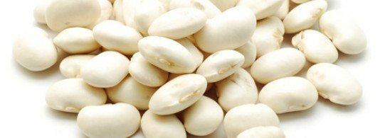 bienfaits haricots blancs digestion santé