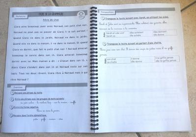 Visuel du fichier Faire de la Grammaire de Picot
