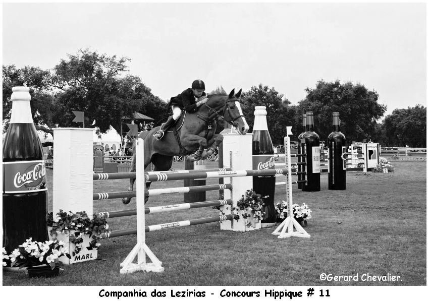 Companhia das Lezirias - Concours Hippique