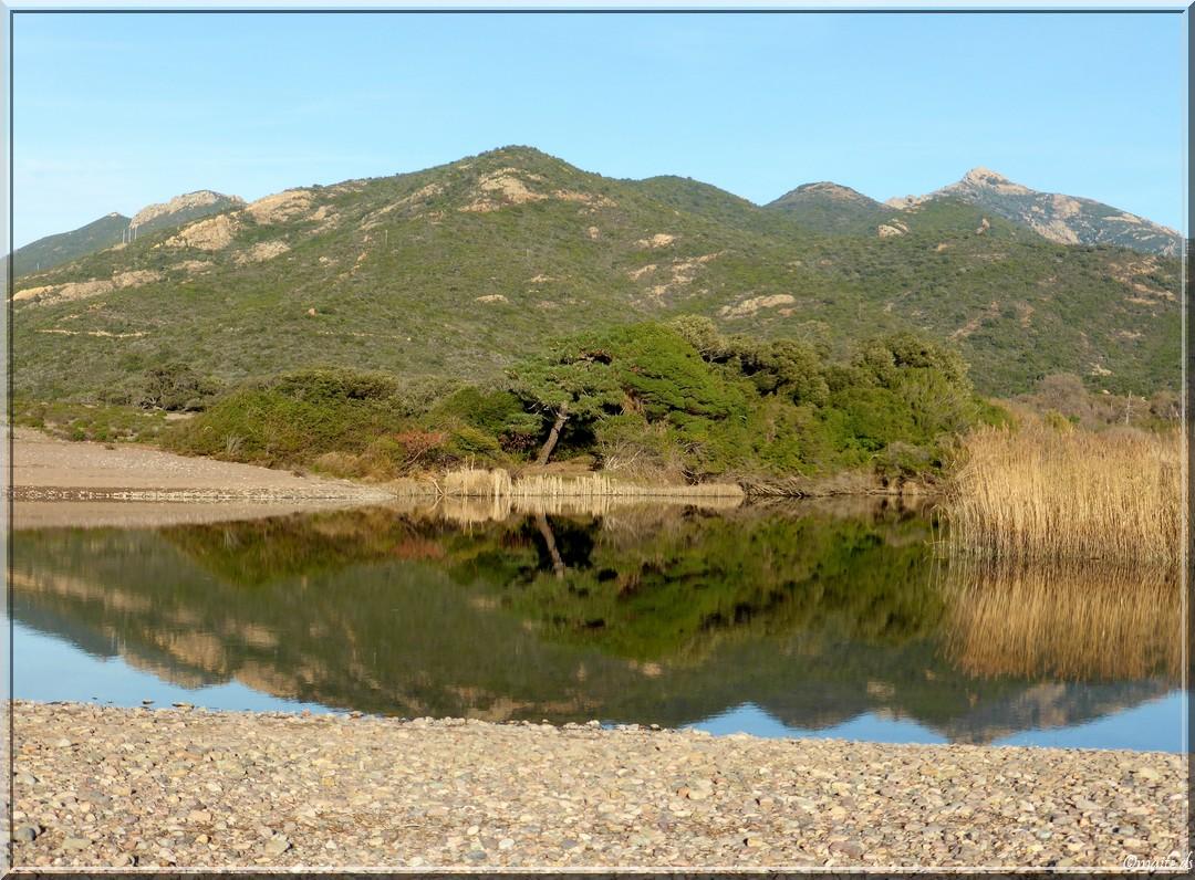 Riciniccia - site protégé - Galéria - Corse