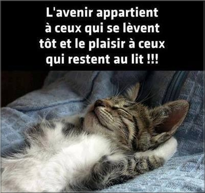 Chats ... Images - 4