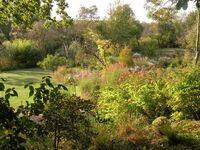 Les jardins du Fond de l'or (Gironde)