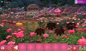 Jouer à Blossom rose garden escape