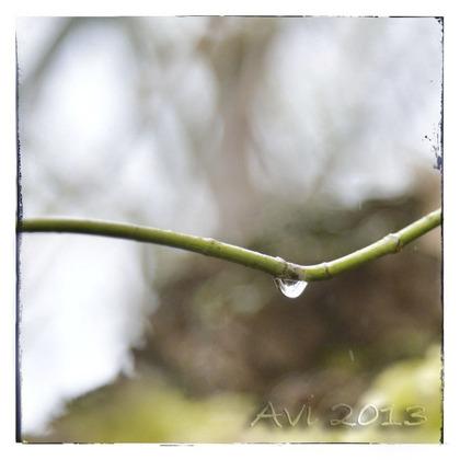 Après la neige, la pluie
