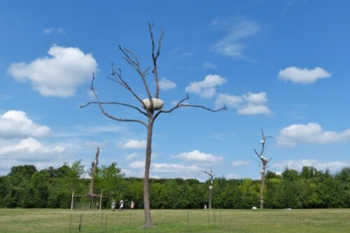Penone-Versailles-bosquet-de-l-e-toile.jpg