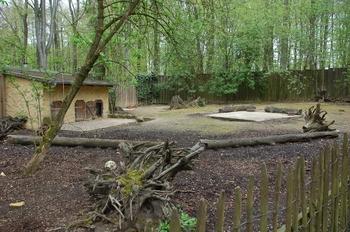Zoo Osnabruck d50 2012 208