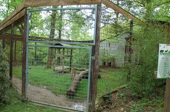 Parc animalier Bouillon 2013 enclos 219