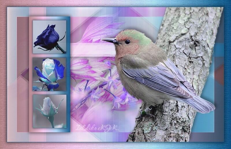 7. Bird