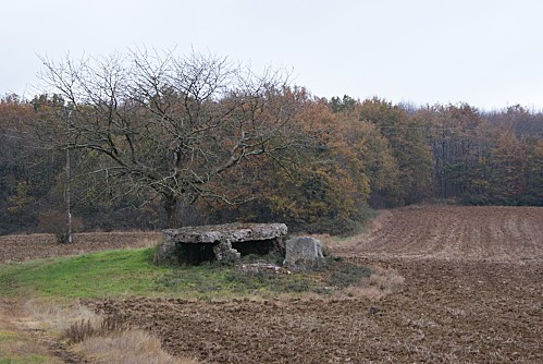 CourdAvortGennes0001-copie-1.JPG