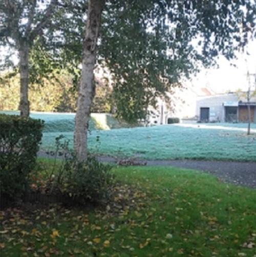 Des gelées en ce bon matin...