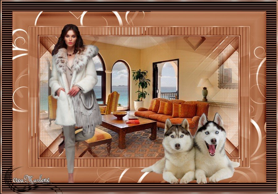 ♥ Le Husky ♥