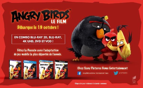 ANGRY BIRDS le Film débarque le 19 octobre 2016 en BLU-RAY 3D, BLU-RAY, DVD et VOD chez Sony